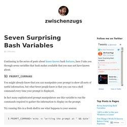 Seven Surprising Bash Variables – zwischenzugs
