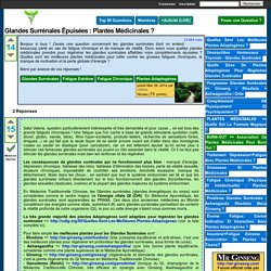 Glandes Surrénales épuisées : Plantes Médicinales ? - Forum Plantes Médicinales