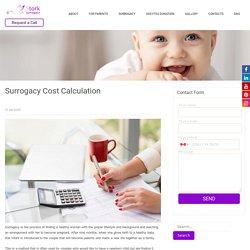Surrogacy Cost Calculation