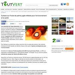 Surtaxe sur l'huile de palme jugée néfaste pour l'environnement et la santé