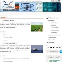 La surveillance agricole par les drones civils