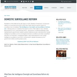 Domestic Surveillance Reform