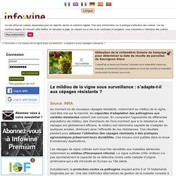 INRA 13/05/16 Le mildiou de la vigne sous surveillance : s'adapte-t-il aux cépages résistants ?