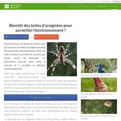 Bientôt des toiles d'araignées pour surveiller lenvironnement ?