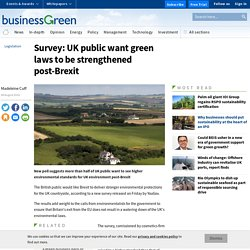 Survey: UK public want green laws to be strengthened post-Brexit