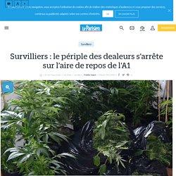 Survilliers : De retour du Maroc, le périple des dealeurs Mohamed et Hicham.A s'arrête sur l'aire de repos de l'A1, les valises pleines de drogue - Le Parisien