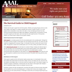 The Survival Guide to Child Support