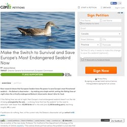 texte de la pétition: Make the Switch to Survival and Save Europe's Most Endangered Seabird Now