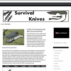 What is the Best Survival Knife?
