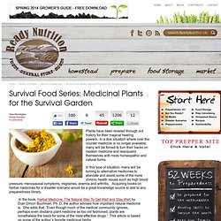 Survival Food Series: Medicinal Plants for the Survival Garden