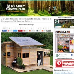 My Family Survival Plan 29 Cool Recycled Pallet Projects