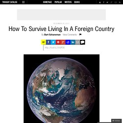 How To Survive Living In A Foreign Country