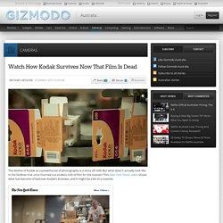Watch How Kodak Survives Now That Film Is Dead