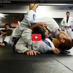 Ryron Gracie // Surviving, Defending, and Escaping the Sidemount