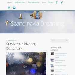 Survivre un hiver au Danemark / Scandinavia Dreaming