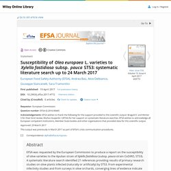 EFSA 19/04/17 Susceptibility of Olea europaea L. varieties to Xylella fastidiosa subsp. pauca ST53: systematic literature search up to 24 March 2017