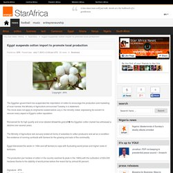 Egypt suspends cotton import to promote local production