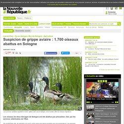 Suspicion de grippe aviaire : 1.700oiseaux abattus en Sologne - 24/03/2017 - La Nouvelle République Loir-et-Cher