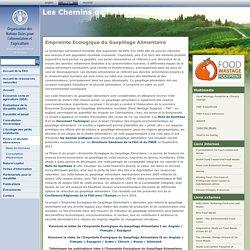 FAO : Pertes et déchets alimentaires