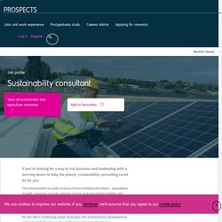 Sustainability consultant job profile