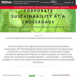 Corporate Sustainability at a Crossroads