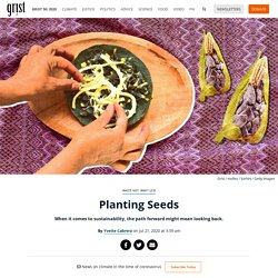 Planting Seeds When it comes to sustainability, the path forward might mean looking back. By Yvette Cabrera on Jul 21, 2020 at 3:59 am
