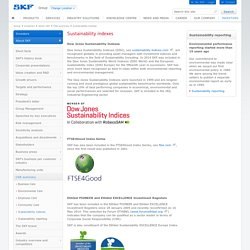 SKF case - Sustainability indexes