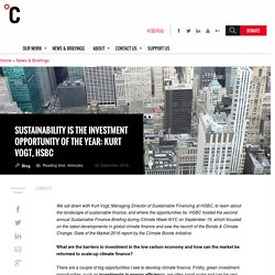 Sustainability is the investment opportunity of the year: Kurt Vogt, HSBC