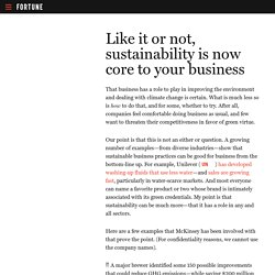 Sustainability Practices in Business
