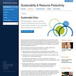 Sustainability & Resource Productivity Practice
