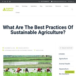 What Are The Best Practices Of Sustainable Agriculture?