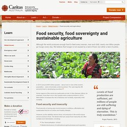 Food Security Sustainable Agriculture and Global Poverty - Caritas Australia