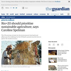 Rio+20 should prioritise sustainable agriculture, says Caroline Spelman