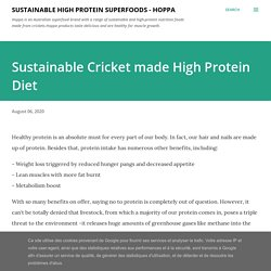 Sustainable Cricket made High Protein Diet