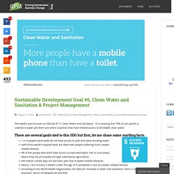 Sustainable Development Goal #6, Clean Water and Sanitation & Project Management
