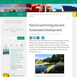Natural swimming pool and Sustainable Development. - Bio-ressources : le blog