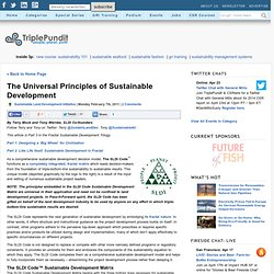 The Universal Principles of Sustainable Development