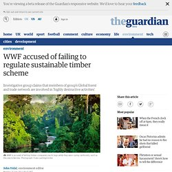 WWF accused of failing to regulate sustainable timber scheme