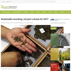 Sustainable investing, not just a dream for 2017
