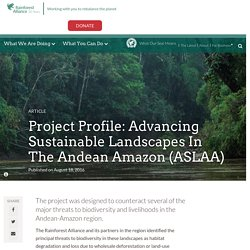 Project Profile: Advancing Sustainable Landscapes in the Andean Amazon (ASLAA)