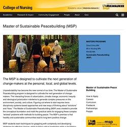 Master of Sustainable Peacebuilding (MSP)