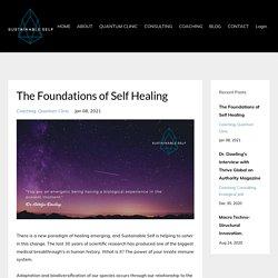 Sustainable Self, Inc. Model of Quantum Self-Healing