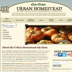 About the Urban Homestead project