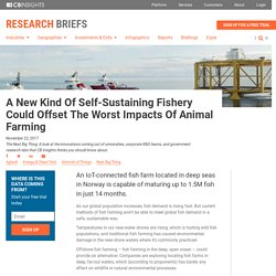 A New Kind Of Self-Sustaining Fishery Could Off-Set The Worst Impacts Of Animal Farming