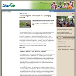 CLIMARICE - Sustaining rice production in a changing climate