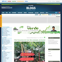 Blog Verde - De olho nessa tal de sustentabilidade: posts de Liana Melo e Emanuel Alencar - Blog Verde: O Globo