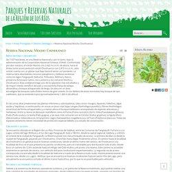 Turismo Sustentable en Áreas Protegidas de la Región de Los Ríos - Reserva Nacional Mocho Choshuenco