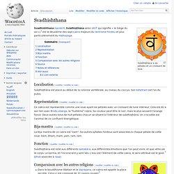 6 Svadhisthana/ Wikipedia