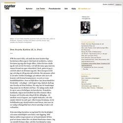Läs Den Svarta Katten (E.A. Poe) - Översättning av L Patrik W Johansson