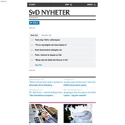 Sydkorea imponeras av svensk skola